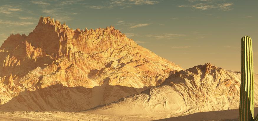 desierto simsa